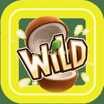 JungleDelight_S_Wild-min