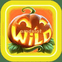 MrHallowWin_Wild-min