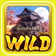 NinjavsSamurai_S_Wild-min