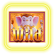 ganesha-fortune_1x1_wild-min