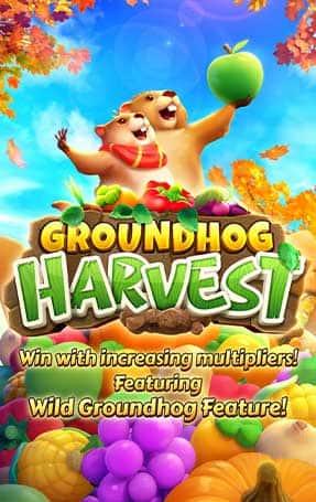 groundhog-harvest_big-min