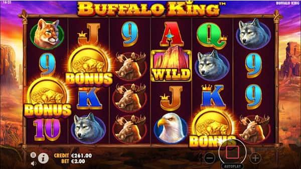 Buffalo-King-skatter-872x490 copy-min