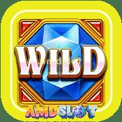 Wild_BoosterSb4-min