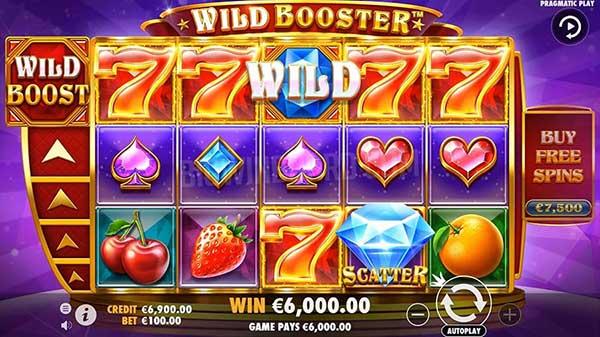 Wild_Booster_07-min